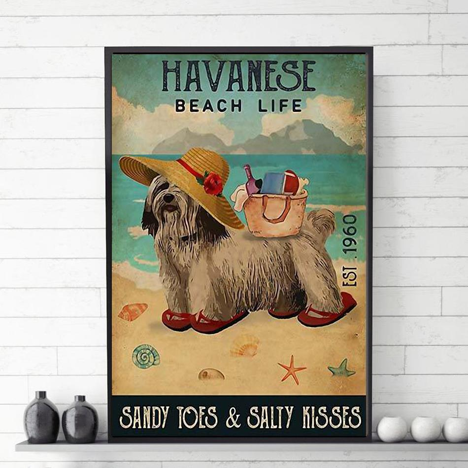 Havanese beach life sandy toes and salty kisses poster canvas
