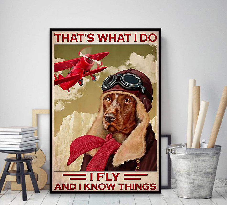 That's what I do fly and I know things Golden Retriever red aircraft poster decor art