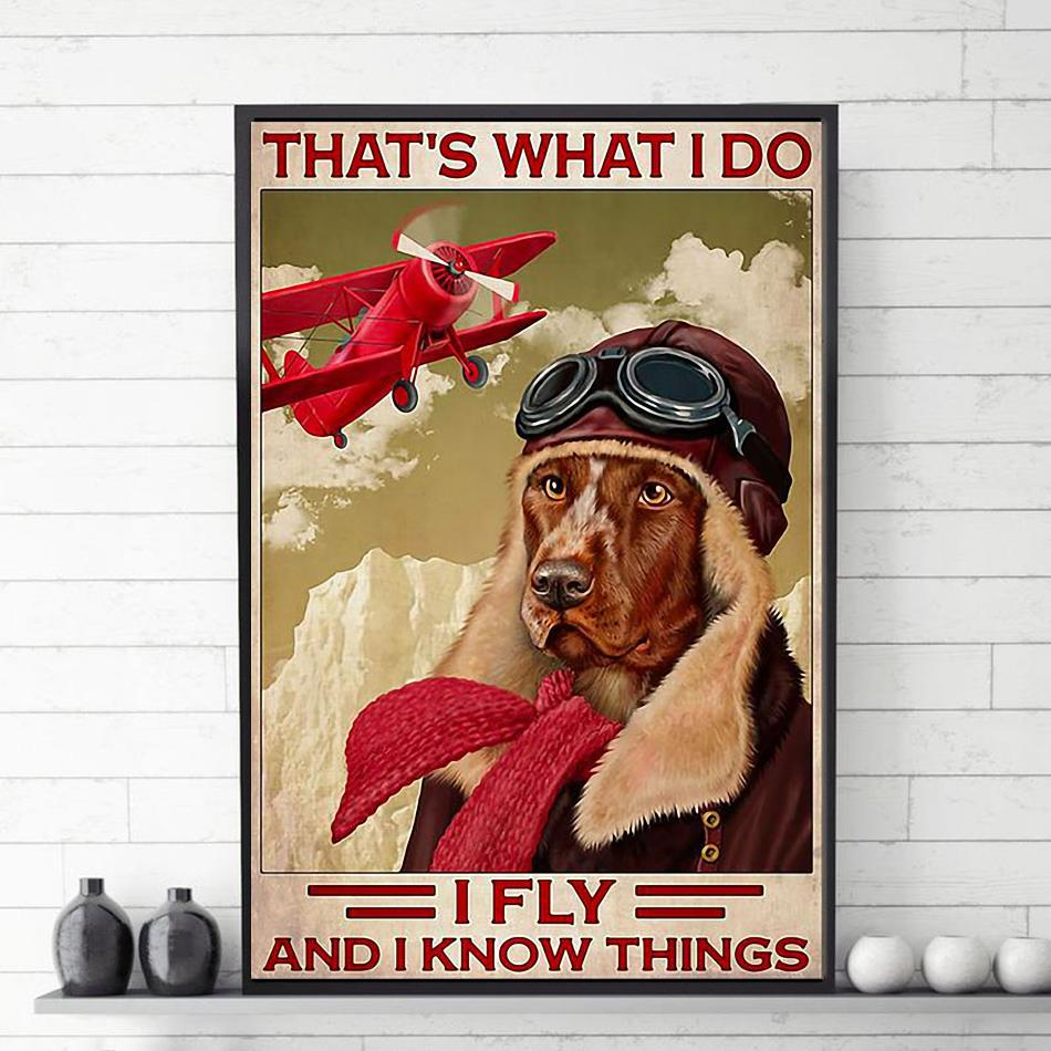 That's what I do fly and I know things Golden Retriever red aircraft poster