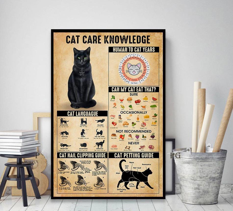Cat care knowledge poster decor art