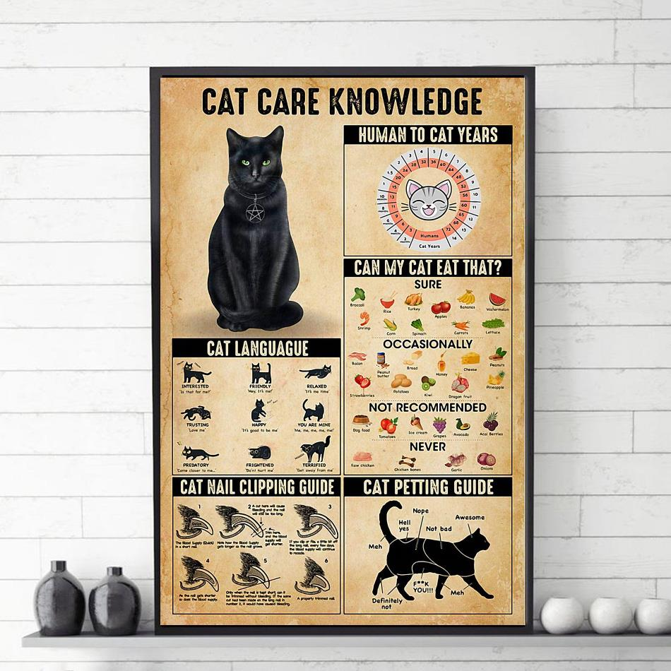 Cat care knowledge poster