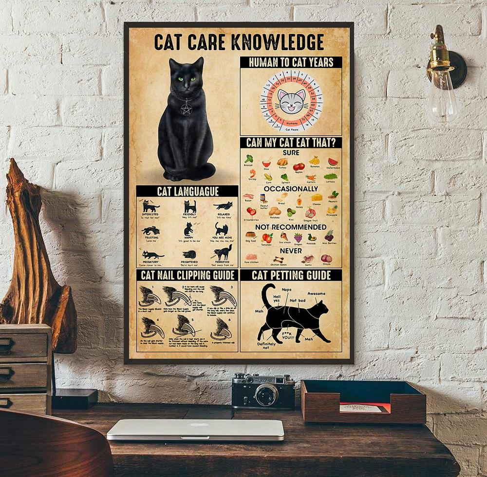 Cat care knowledge poster wall art