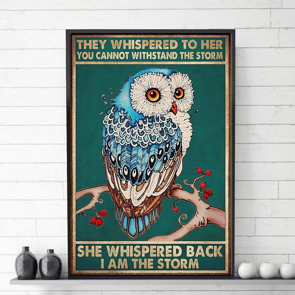Owl whispered back I am the storm poster